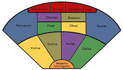 orchestra positions